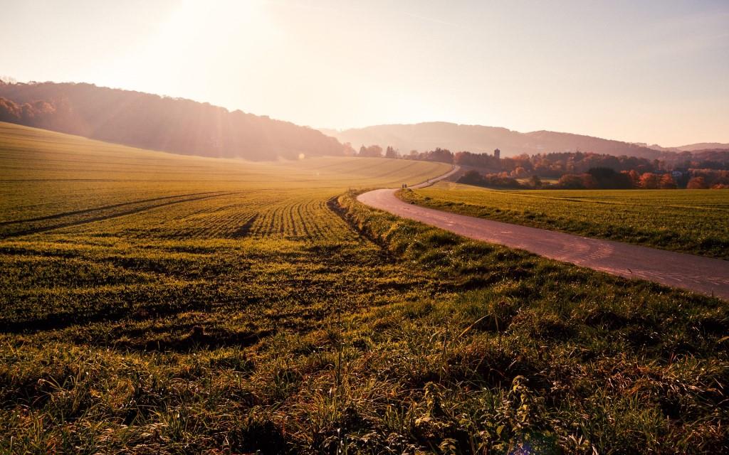 Droga przez jesienne pola