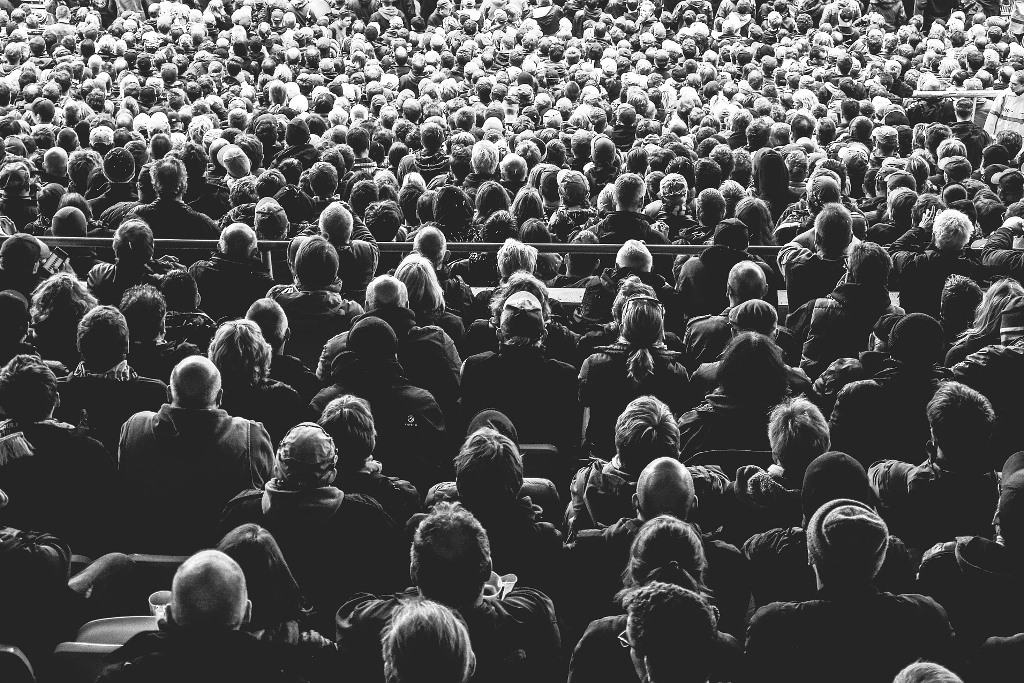 Ludzie na widowni (sfotografowani od tyłu)