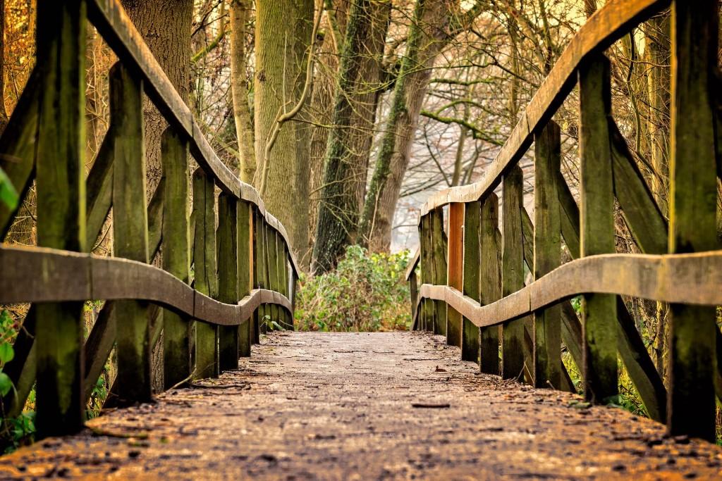 Stary most i droga