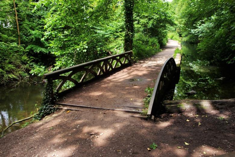 Ścieżka w parku, zielone drzewa  i mostek