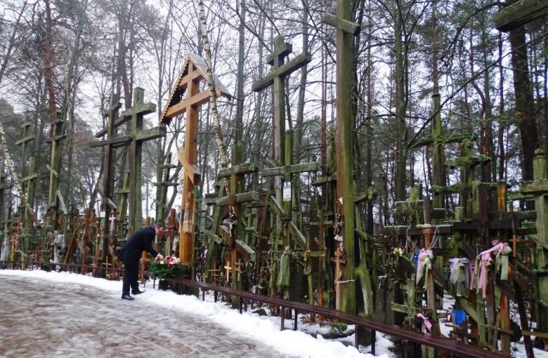 Las drewnianych krzyży