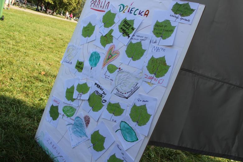 zdjęcie: plansza z narysowanym drzewam, na którym przyklejone są pokolorowane liście
