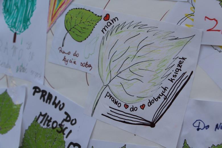 zdjęcie: pokolorowany liść z napisem: mam prawo do dobrych książek