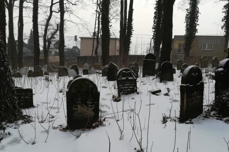 Zasrośnięty cmentarz, macewy, śnieg