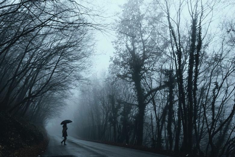 Samotna kobieta pod czarną parasolką, drzewa, płot, deszcz i ciemność