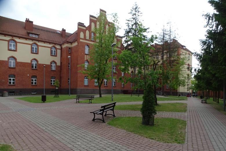 Neogotycki budynek, świeża zieleń