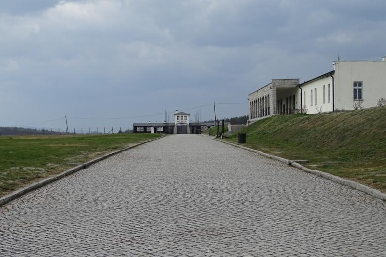 Aleja wśród szczątków baraków obozie koncentracyjnym