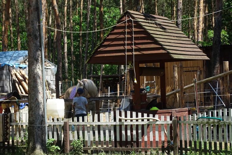Koń przed domem, przed nim chłopiec (widziany od tyłu)