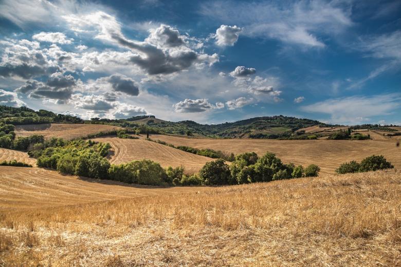 Górzysty krajobraz z polem