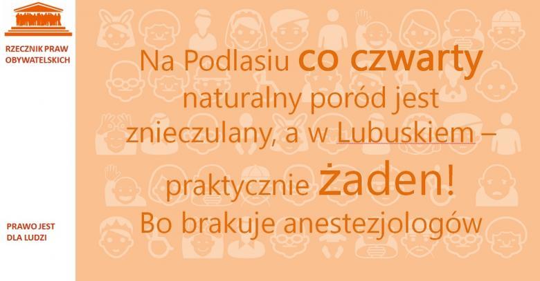 Grafika. Napis na pomarańczowym tle