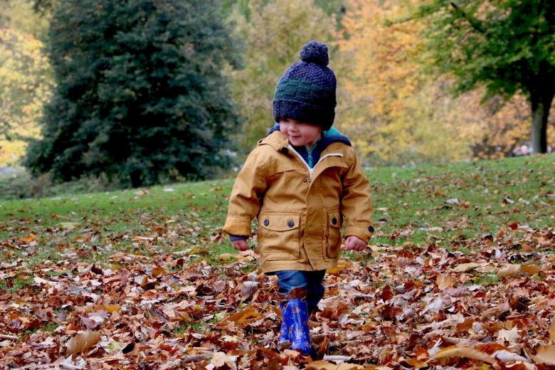 Pogodny dwulatek w czapeczce bawiący się w jesiennych liściach