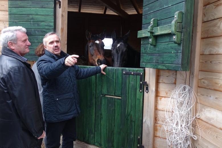 Koń wystawia głowę zza dzrwi, mężczyzna wskazuje coś ręką