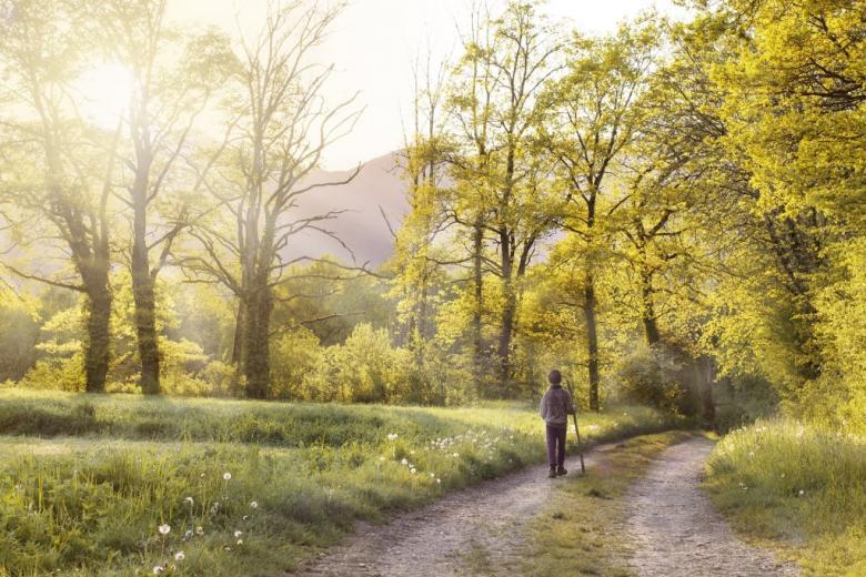 Młoda osoba wędruje przez wiosenny krajobraz