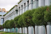 Zielony nowoczesny budynek z filarami