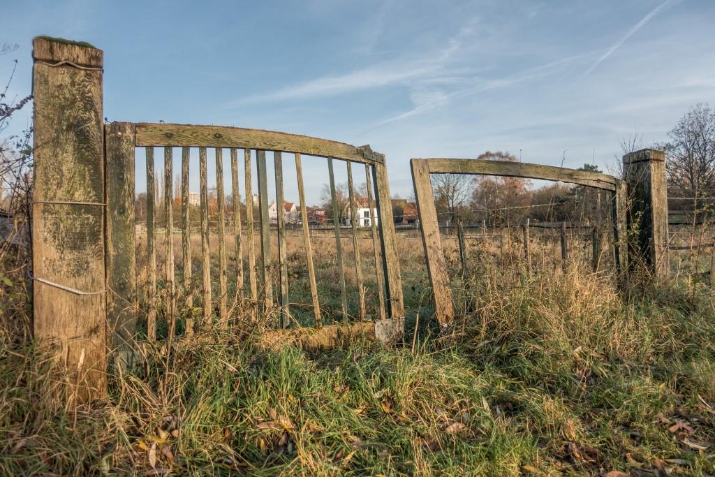 Płot i stara brama