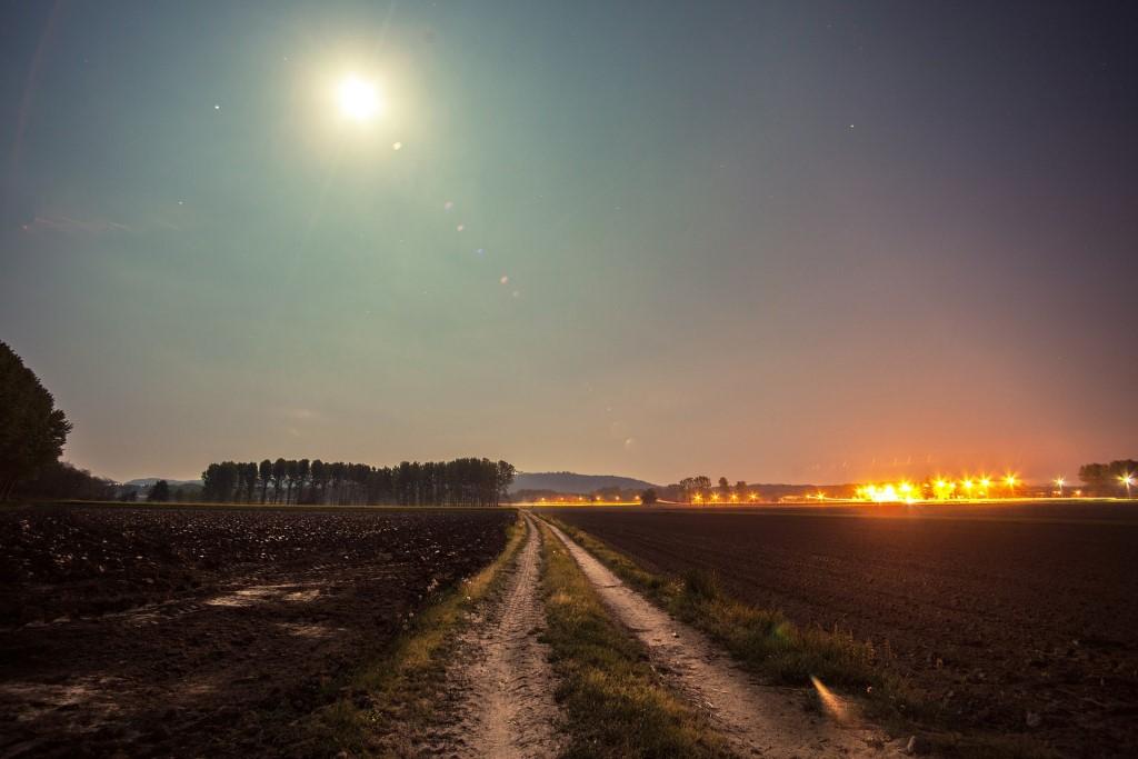 Polna droga oświetlona przez księżyc