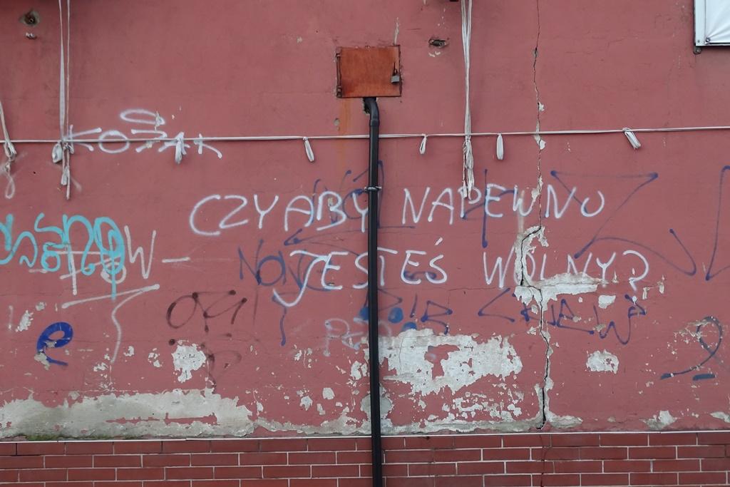 """Napis na ścianie """"Czy naprawdę jesteś wolny"""""""