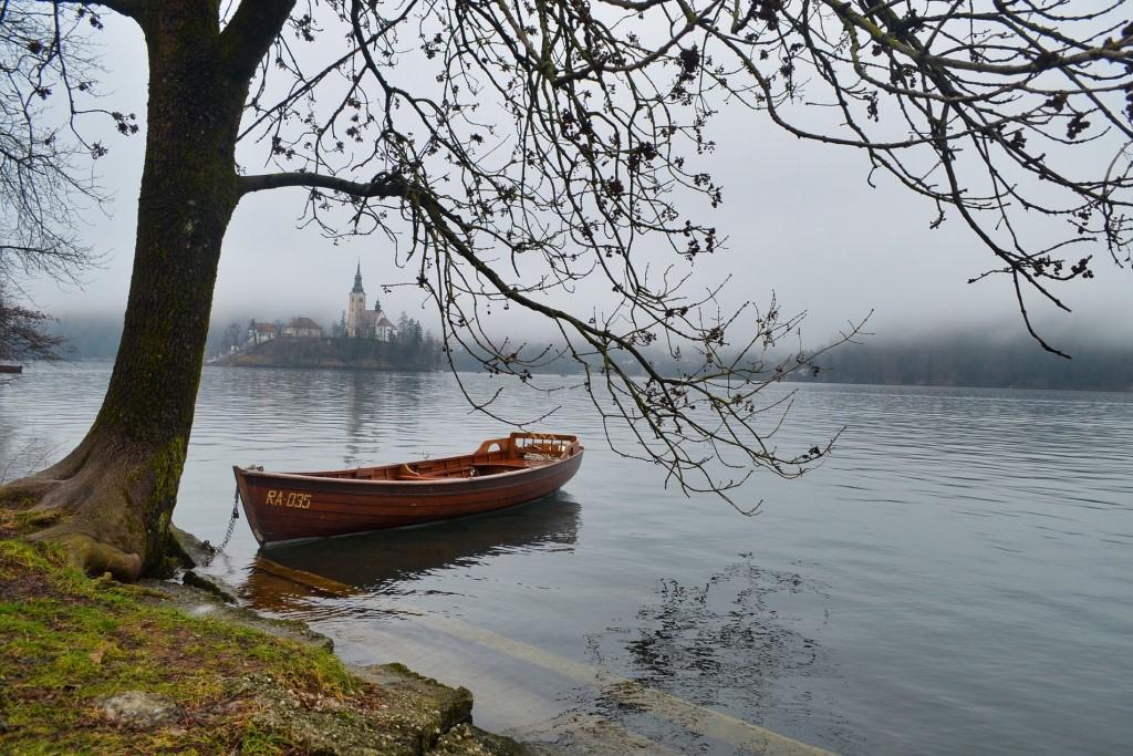 Łódź nad jeziorem przypięta do brzegu